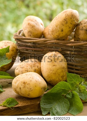 Basket of fresh tasty new potatoes. Selective focus - stock photo