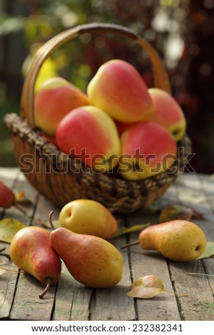 Basket of freshly harvested apples and pears on wooden background with autumn leaves - stock photo