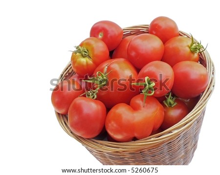 Basket of home-grown tomatoes, viewed from above at an angle, isolated on white background. - stock photo