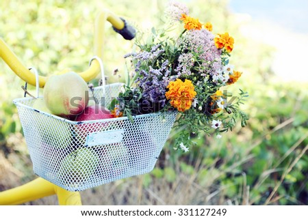 Basket of juicy fruits and flowers on bike, outdoors