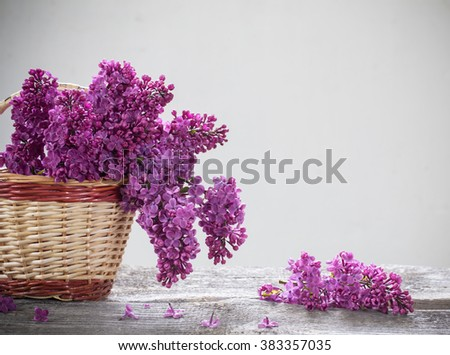 basket with a branch of lilac flower - stock photo