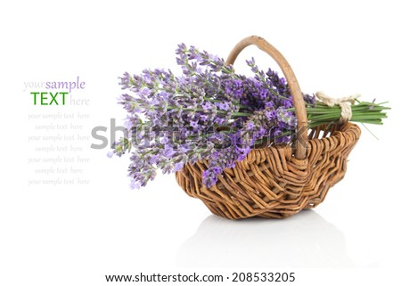 Basket with a lavender, isolated on white background - stock photo