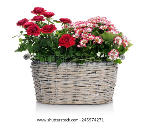 basket with flowers - stock photo
