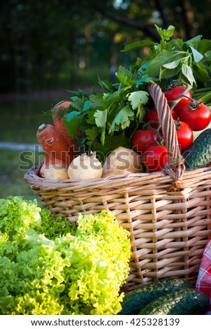 Basket with fresh farm vegetables in the grass. Picnic. Healthy food. - stock photo