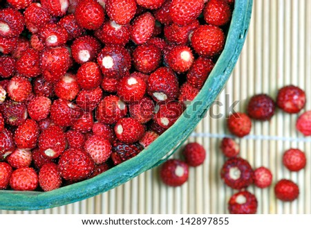 basket with fresh wild strawberries, free delicacy from the scandinavian forests - stock photo