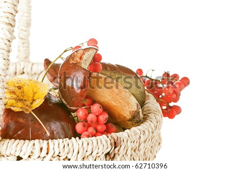 basket with mushroom, berry and leaf isolated on white