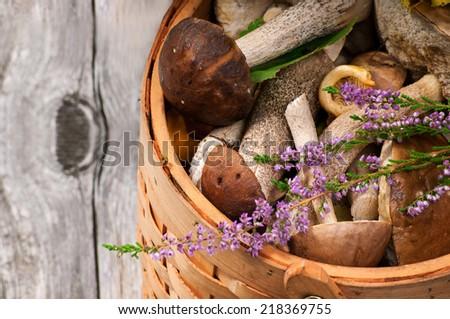 Basket with mushrooms - stock photo