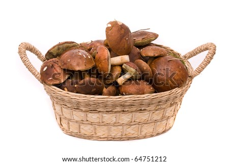 Basket with mushrooms isolated on a white background - stock photo