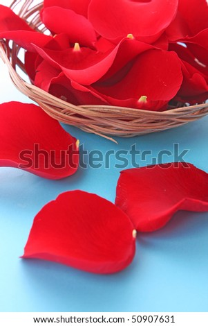 Basket with red roses petals on blue
