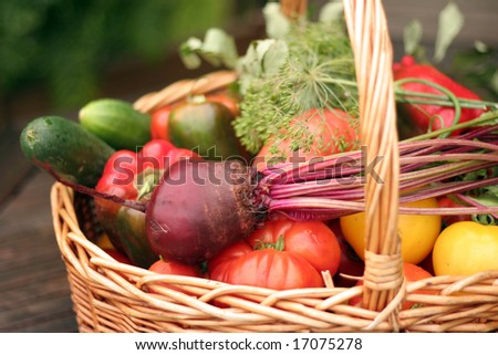 Basket with vegetables - autumn gifts of a nature - stock photo
