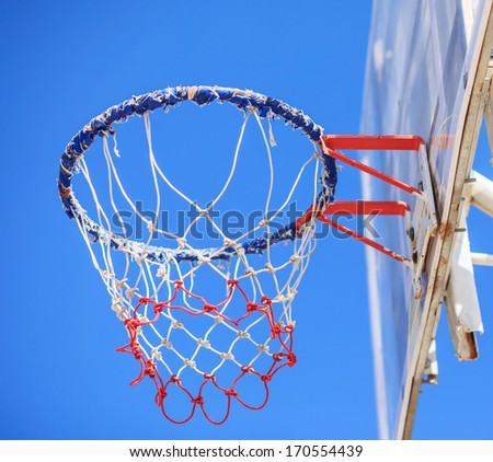 basketball hoop and a cage with leaves, sports background.