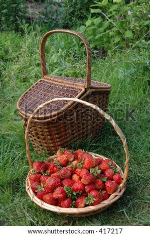 Baskets in garden