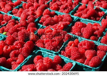 Baskets of Bright Red Raspberries at the Farmers Market - stock photo
