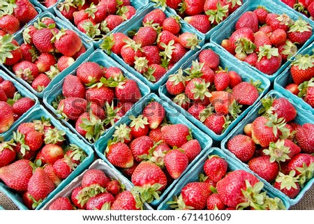 Baskets of fresh picked strawberries.