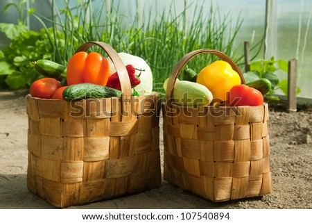 Baskets of vegetables is on the ground