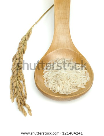 Basmati rice in wooden spoon on white background.Rice branch - stock photo