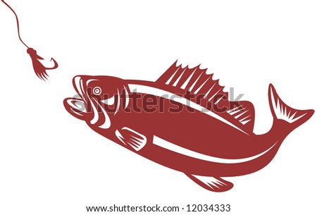 Bass attracted to a lure - stock photo