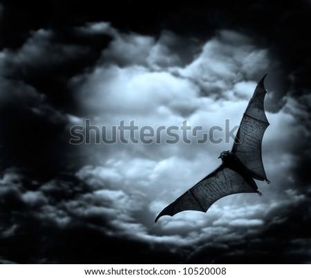 bat flying in the dark cloudy sky - stock photo
