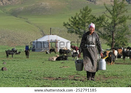 BAT-ULZII, MONGOLIA, July 15, 2013 : women organize the milking of the yaks and the goats in the steppe. Half of mongolian population has a nomadic life.