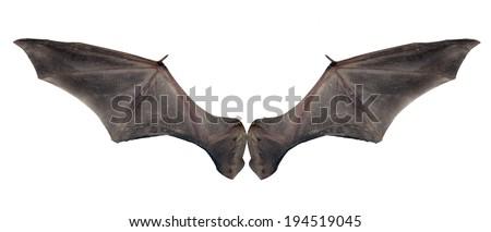 bat wings - stock photo