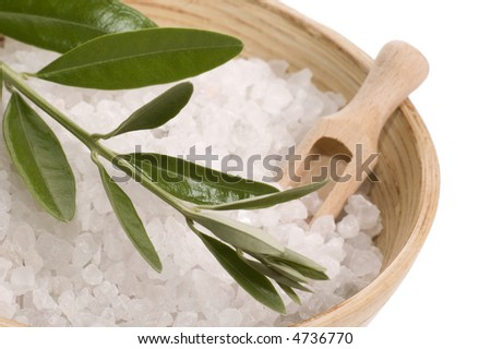 bath items. salt and fresh olive branch. isolated on the white background.