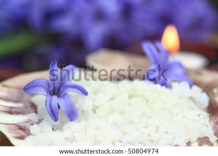 Bath salts in a seashell with candles glowing in the background. Extreme shallow DOF. - stock photo