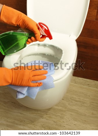 Bathroom cleaning: wiping toilet seat with rubber and spray - stock photo