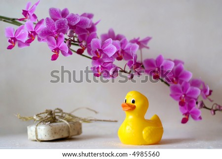 bathroom scene with duck - stock photo