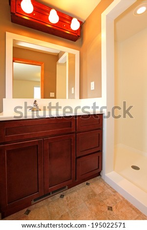 Bathroom vanity with mirror and open shower.