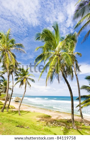 Bathsheba, Eastern coast of Barbados, Caribbean - stock photo