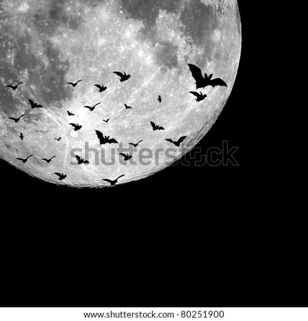 Bats flying in the night with a full moon in the background. Perfect background for Halloween concept and with plenty of space for text or image - stock photo