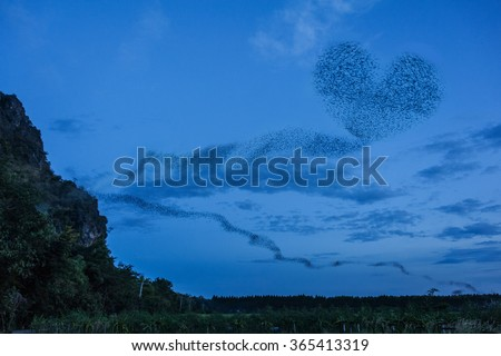 Bats out of the cave and form heart shape - stock photo