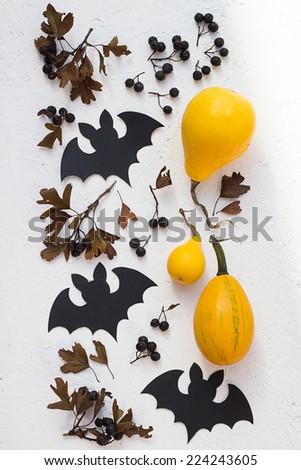 Bats, Pumpkins and Black Hawthorn Berries - stock photo
