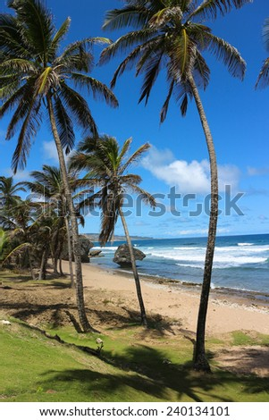Batsheba bay is everyone's dream of the perfect tropical beach - cliffs, coconut palms, white sand, brisk breezes and turquoise sea.  Caribbean island of Barbados. - stock photo
