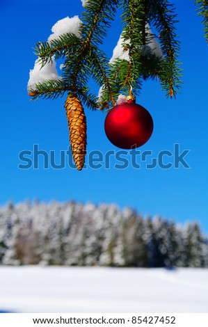 bauble and fir cone on a Christmas tree outside in a snowy landscape... - stock photo