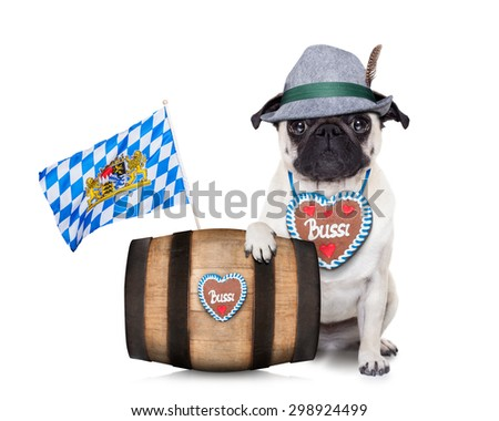 bavarian german pug  dog behind beer barrel and  bavarian flags, isolated on white background