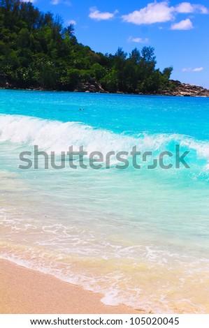 Bay Dream Landscape - stock photo