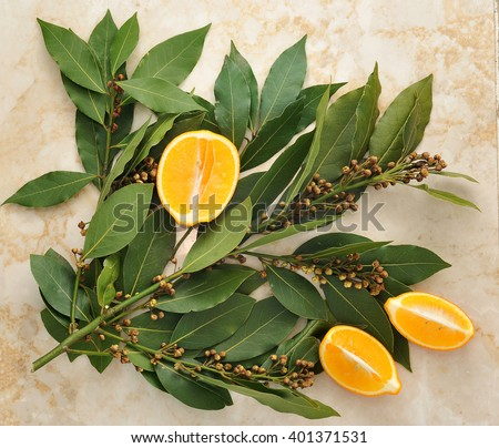 Bay leafs with seeds and yellow orange marble background. top view - stock photo