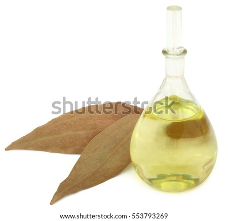 Bay leaves with essential oil over white background