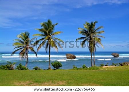 bay of Bathsheba, Barbados - stock photo