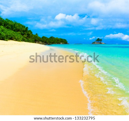 Bay Tranquility Palms - stock photo