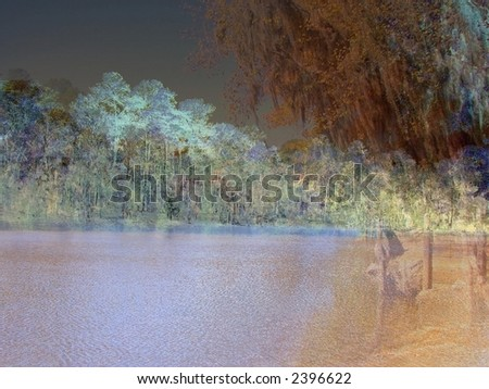 Bayou Abstract - stock photo