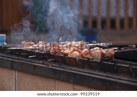 BBQ flavored meat on the grill - stock photo