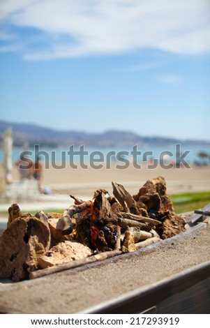 Bbq prepared at beach - stock photo