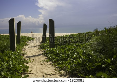 Beach and Nature - stock photo