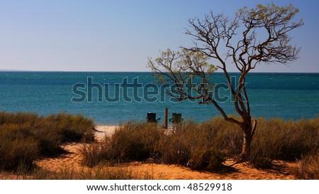 Beach and Ocean at Monkey Mia Western Australia - stock photo