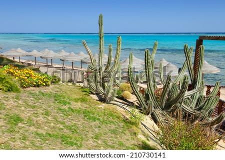 beach and sea in Marsa Alam, Red Sea, Egypt - stock photo