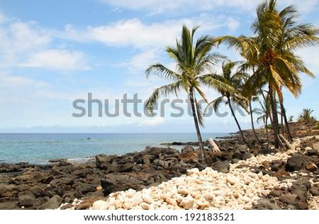 Beach at Lapakahi State Historical Park, Big Island, Hawaii - stock photo