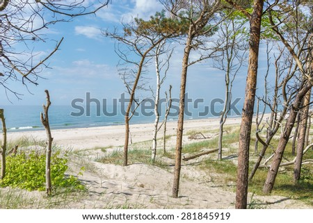 Beach at the Baltic Sea - stock photo