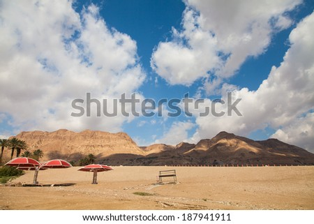 Beach at the dead sea - Israel - stock photo